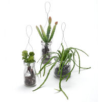 プリマ フェイクウォーター ボトル 多肉植物 3個セット PRAS-0283 1セット(3個:3種×1個ずつ) (直送品)プリマ