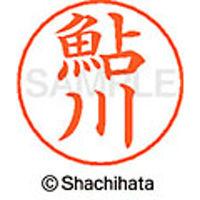 シャチハタ ネームペン用ネーム シルバー 既製 鮎川 X-GPS 0099 アユカワ 1個(取寄品)