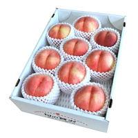 山形県産品種おまかせ白桃3kg