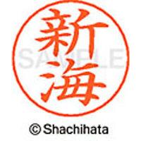 シャチハタ ネームペン用ネーム シルバー 既製 新海 X-GPS 1291 シンカイ 1個(取寄品)