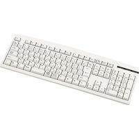 サンワサプライ 日本語109キーボード(USBタイプ・アイボリー) SKB-109LUN 1台  (直送品)