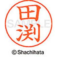シャチハタ ネームペン用ネーム シルバー 既製 田渕 X-GPS 2423 タブチ 1個(取寄品)