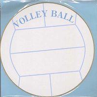 丸型色紙 バレーボール EM-SB04 5枚 エヒメ紙工 (直送品)