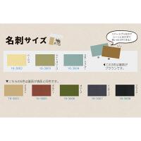 ササガワ タカ印 カード 名刺大 ライトオリーブ 16-3003 1セット(150枚:30枚入×5袋)(取寄品)