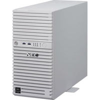 NEC Express5800/T110i(4C/E3ー1220v6/4G/2HD2ーW2016) NP8100-2507YPCY 1式  (直送品)