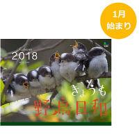 えい出版社 2018年 カレンダー きょうも野鳥日和 9104776 (直送品)