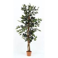 人工観葉植物 フィカス 690 A 52661 1台 不二貿易 (直送品)