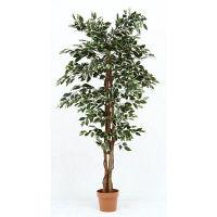 人工観葉植物 フィカス 1124 B 52664 1台 不二貿易 (直送品)