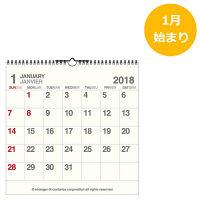 エトランジェ・ディ・コスタリカ 2018年 カレンダー LPカレンダー CLSーAー11 (直送品)