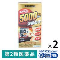 【第2類医薬品】アンラビリゴールド 360錠 2箱 阪本漢方製薬