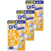 DHC(ディーエイチシー) イチョウ葉 20日分(60粒)×3袋セット サプリメント