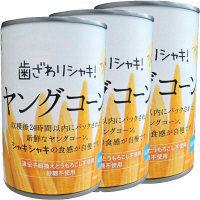 富士貿易 サニーファーム ヤングコーン 420g 1セット(3個)