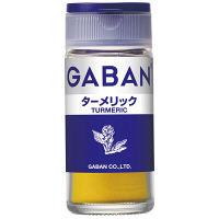 GABAN ギャバン ターメリック 1セット(2個入) ハウス食品