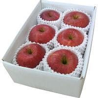 【お手頃お試し商品】山形県産 爽やかな甘さのサンふじりんご 約1.5kg (直送品)