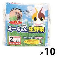 ケース販売 猫草 ミーちゃんのすっきり生野菜 1ケース(2個入×10袋) イデシギョー