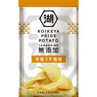 湖池屋 KOIKEYA PRIDE POTATO 本格うす塩味