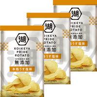 コイケヤ(湖池屋) KOIKEYA PRIDE POTATO(プライド ポテト) 本格うす塩味 1セット(3袋入)