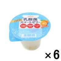 たらみ 乳酸菌スマートゼリー 6個