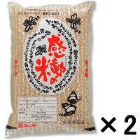 感動の米 コシヒカリ 玄米 5Kg