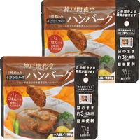 開花亭 煮込みハンバーグ デミグラスソース 190g 1セット(2個)