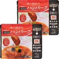 開花亭 煮込みハンバーグ トマトソース 190g 1セット(2個) レンジ対応