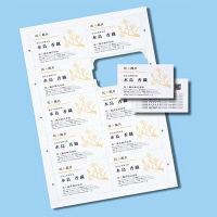サンワサプライ マルチタイプまわりがきれいな名刺カード・標準 JP-MCCM01 1個 (直送品)