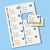 サンワサプライ マルチタイプまわりがきれいな名刺カード・標準(アイ JP-MCCM01BG 1個 (直送品)
