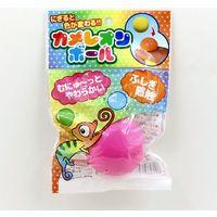 トキワ商事 カメレオンボール 2090029 12個(直送品)