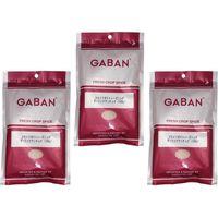 送料無料 GABAN フライドポテトシーズニング(ガーリックアンチョビ) 100g×3袋 【ミックススパイス 香辛料 パウダー】 (直送品)