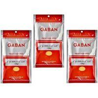 GABAN スパイス ジャークチキンシーズニング(袋) 100g×3袋 【ミックススパイス ハウス食品 香辛料 パウダー 業務用】 (直送品)