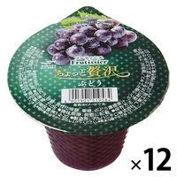 マルハニチロ フルティシエ ちょっと贅沢 ぶどう 210g 1セット(12個)