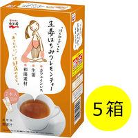 「冷え知らず」さんの生姜はちみつレモンティー スティック 1セット(7本入×5箱) 永谷園 栄養補助食品