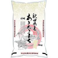 秋田県産 あきたこまち 5kg 【精白米】 令和2年産 1袋 米 お米