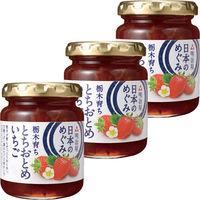 明治屋 日本のめぐみ 栃木とちおとめいちごジャム 155g 1セット(3個)