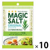 S&B 袋入りマジックソルト オリジナル 20g 10個エスビー食品