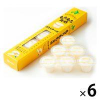 北辰フーズ ひとくチーズ HC-6 6箱 洋菓子