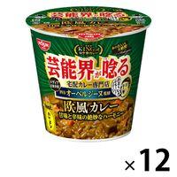 カレーメシ オーベルジーヌ監修 欧風カレー 103g 1セット(12個) 日清食品