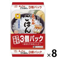 パックごはん 24食 あったかごはん200g(3食入)× 8個 東洋水産 米加工品 包装米飯