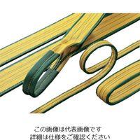 明大 ロックスリング シグマ 25mm×2.0m(エンドレス形) A-2 25X2.0 1本 851-7042(直送品)