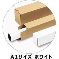 マルアイ ポスターケース60 A1 60角 100枚入 ホワイト CA-22A1 1箱(直送品)