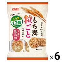 もち麦粒ごとおせんべい 6袋 天乃屋 せんべい おかき