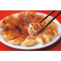 フタバ食品 宇都宮餃子 とんきっき 32個入り肉餃子2箱 G-2 806588 1セット(直送品)