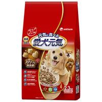 愛犬元気 犬用 ビーフ・緑黄色野菜・小魚入り 2.3kg(小分け4パック入) 1袋 国産 ユニ・チャーム