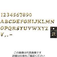 光(ヒカリ) 光 ゴールド文字 大 A ABG20-A 1セット(5個) 224-4506(直送品)