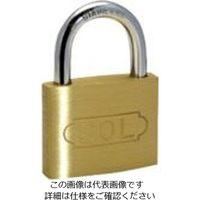 清水 SOL ステンロック 30mm 2500S-30 1個 849-0138(直送品)