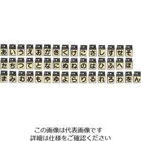 光(ヒカリ) 光 キャリエーター黒 あ CL30B/.A 1セット(5枚) 224-1459(直送品)