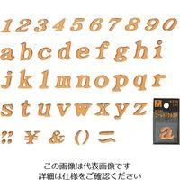 光(ヒカリ) 光 クリスタル文字 a GU20-A 1セット(5枚) 224-3033(直送品)