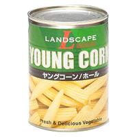 マックストレーディング 「業務用」ヤングコーン(S) 24缶:3ゴウ(直送品)