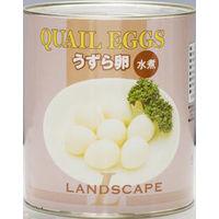 マックストレーディング 「業務用」うずら卵水煮缶 6缶:1ゴウ(直送品)