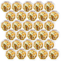 大阪王将 中華丼の具2食×15袋入り♪中華丼の具30食(2食×15袋)冷凍食品 中華丼 おかず お弁当 中華(直送品)